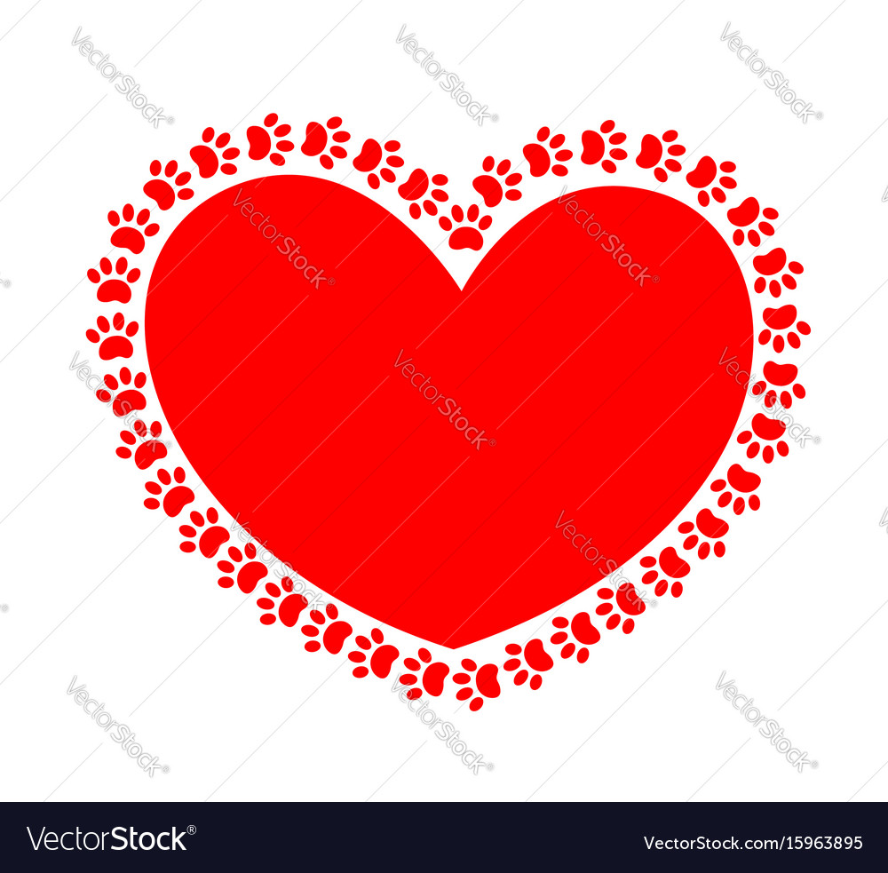 Heart paws vector image