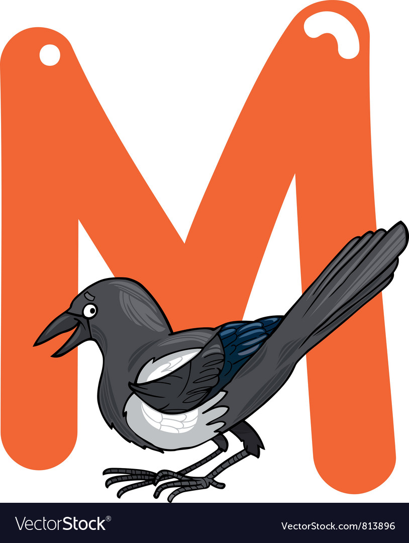M for magpie vector image