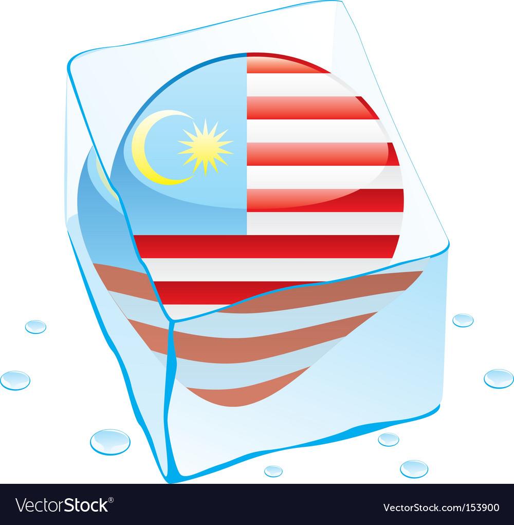 Malaysia flag vector image