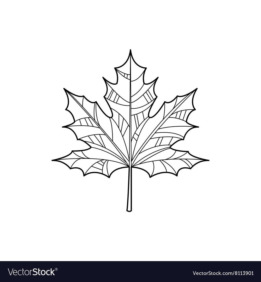 Maple Leaf Zentangle For Coloring vector image