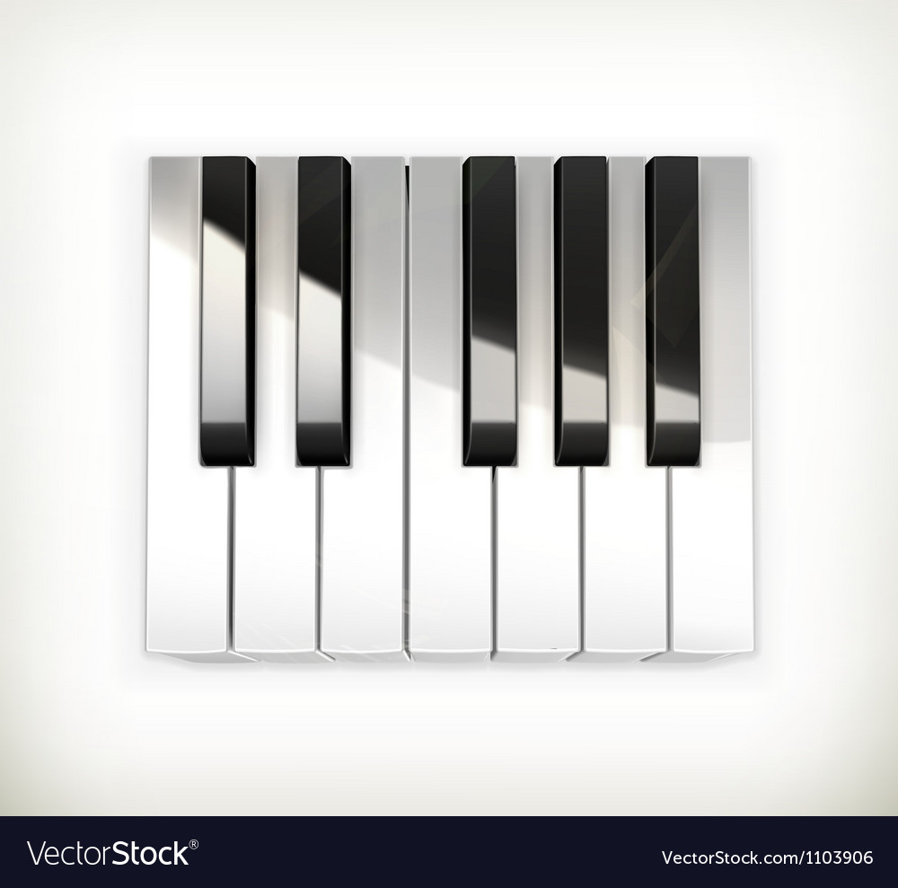 Octave piano keys vector image