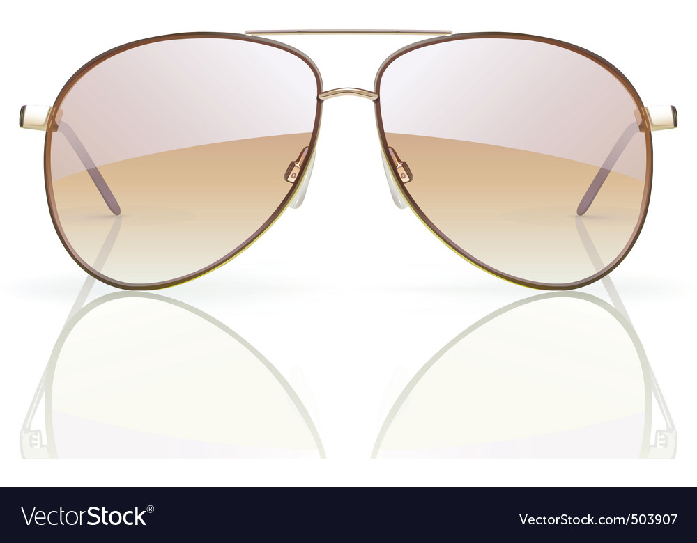 Aviator sunglasses Vector Image