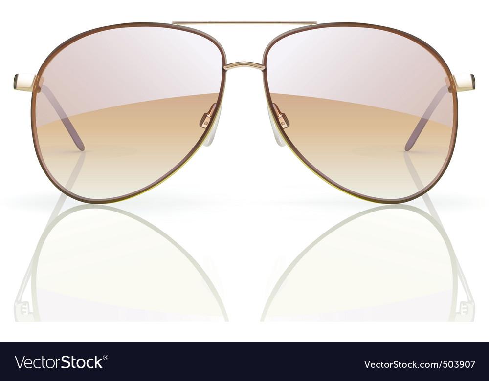 Aviator sunglasses vector image