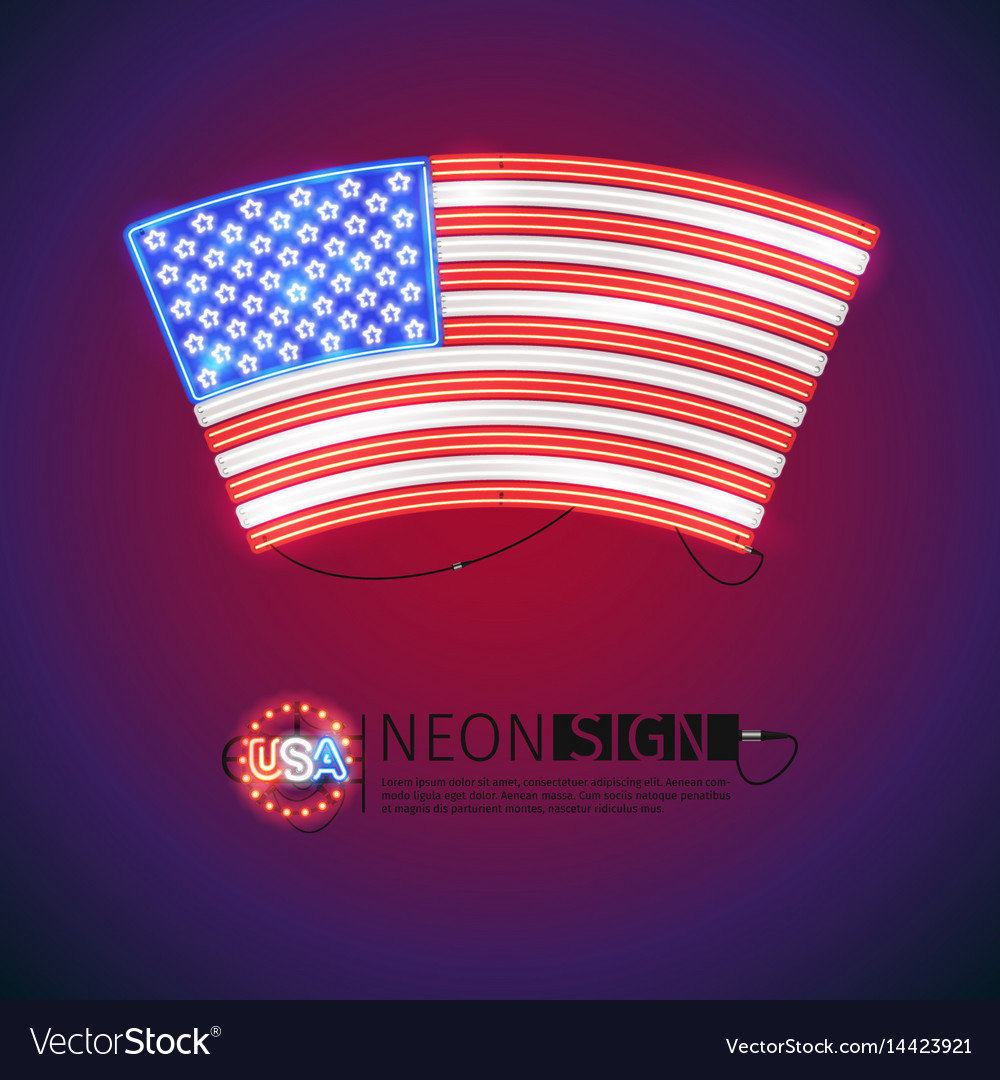 Neon sign arced usa flag vector image