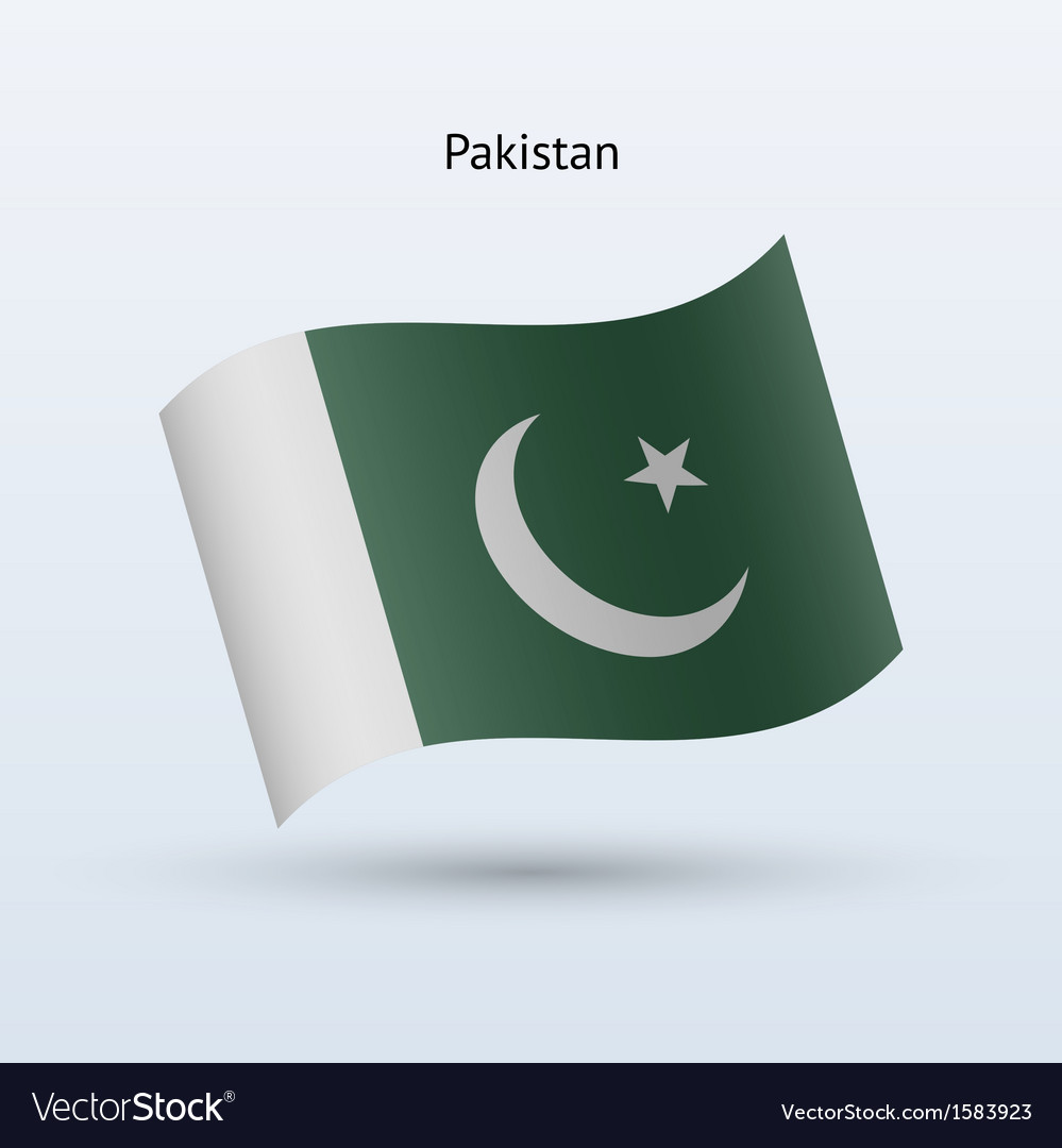 Pakistan flag waving form vector image