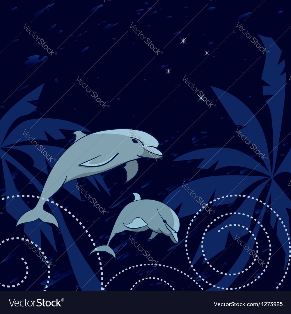 Dolphins and Southern Cross vector image