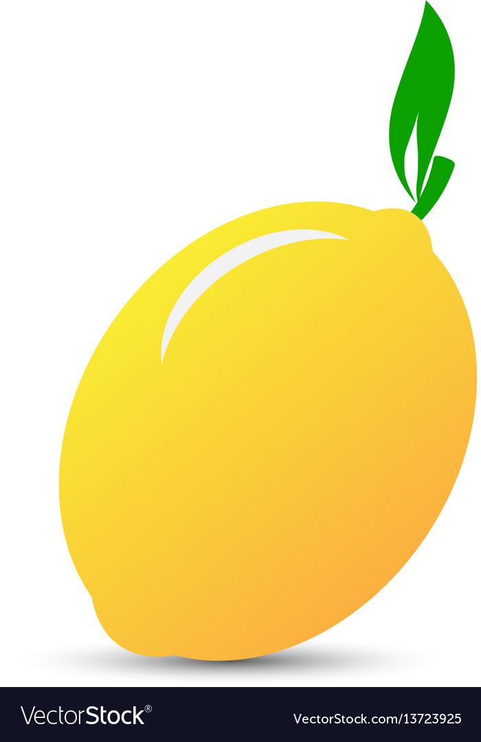 Yellow lemon icon vector image