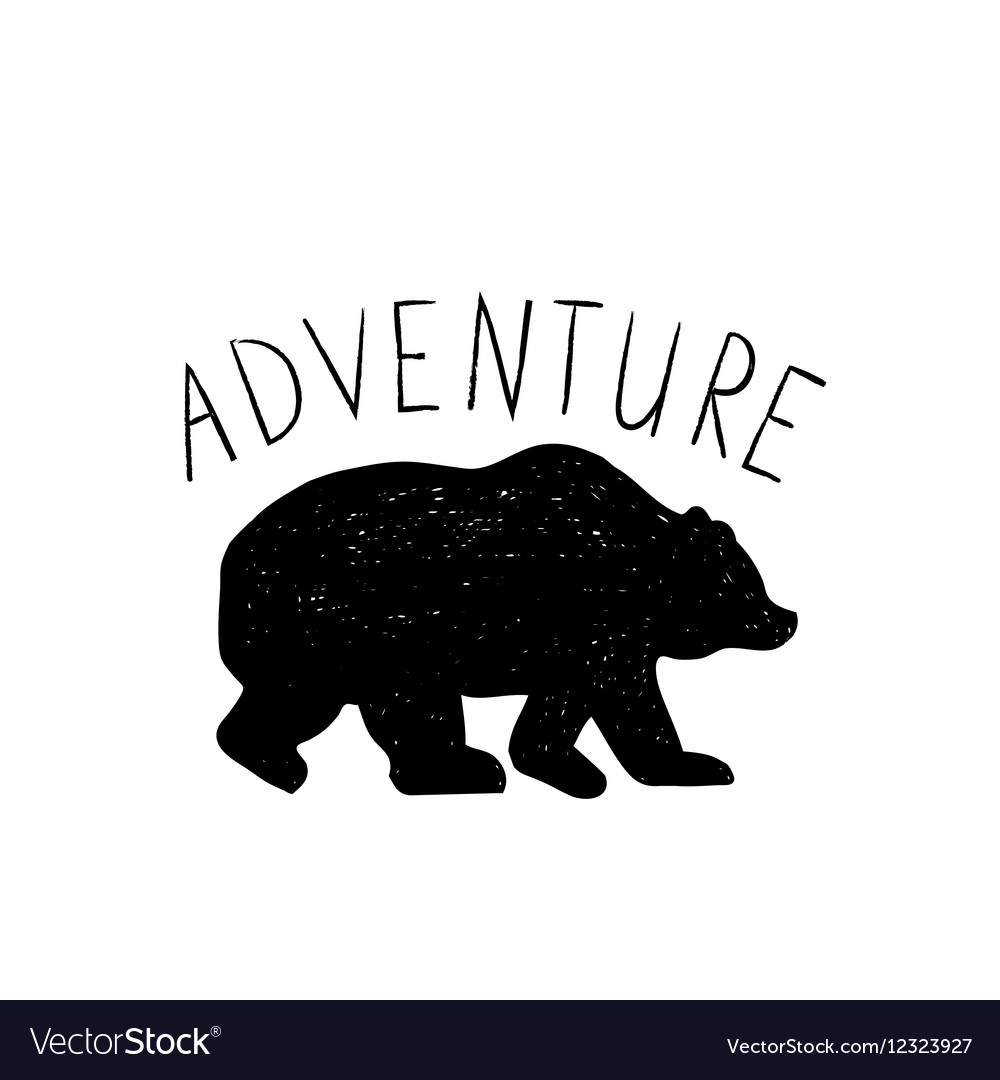 Hand drawn wild forest bear vector image