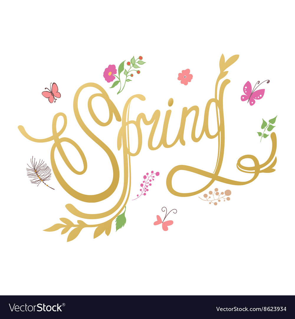 Spring flower background Spring hand-drawn vector image