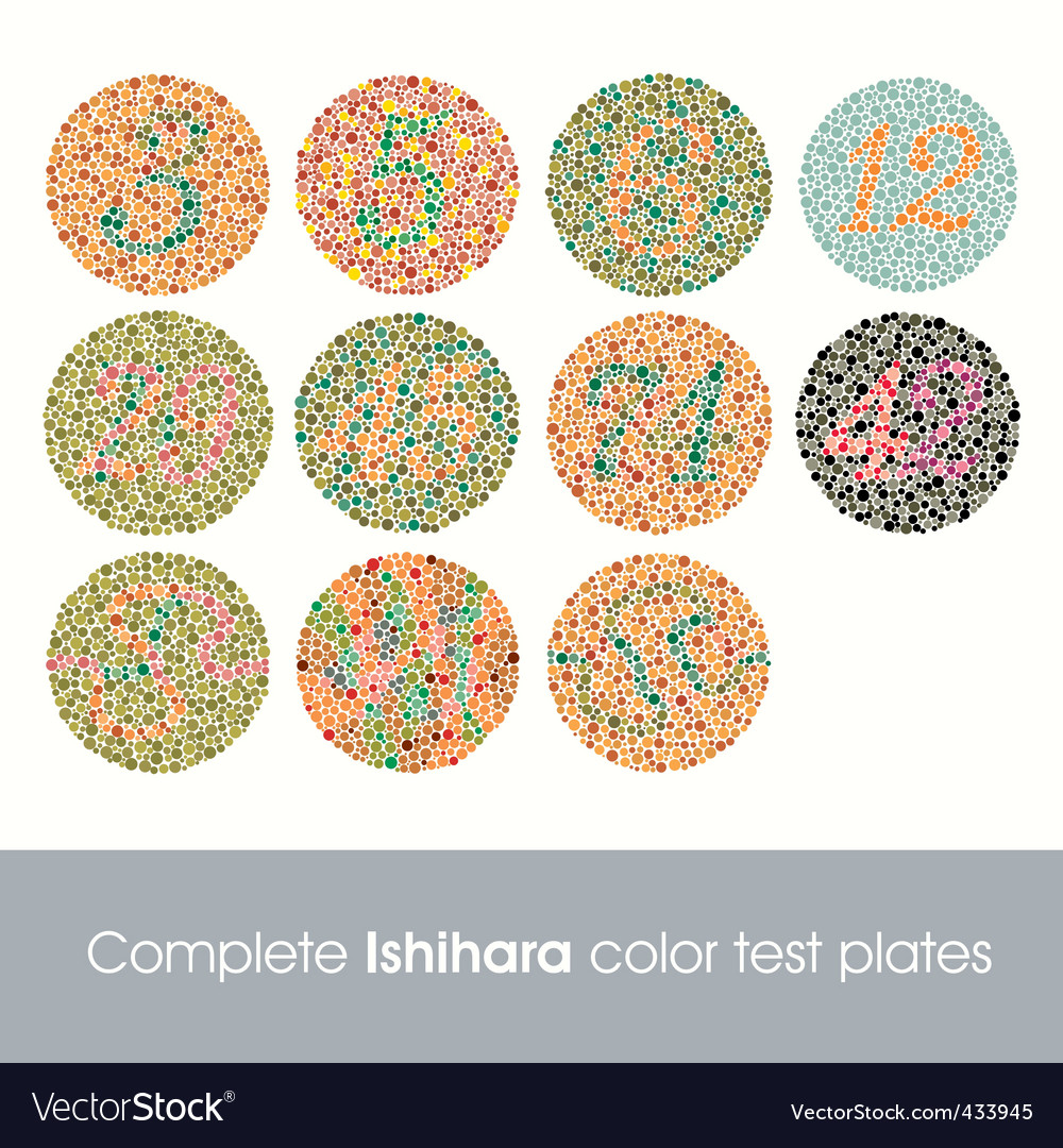 Complete ishihara color test vector image