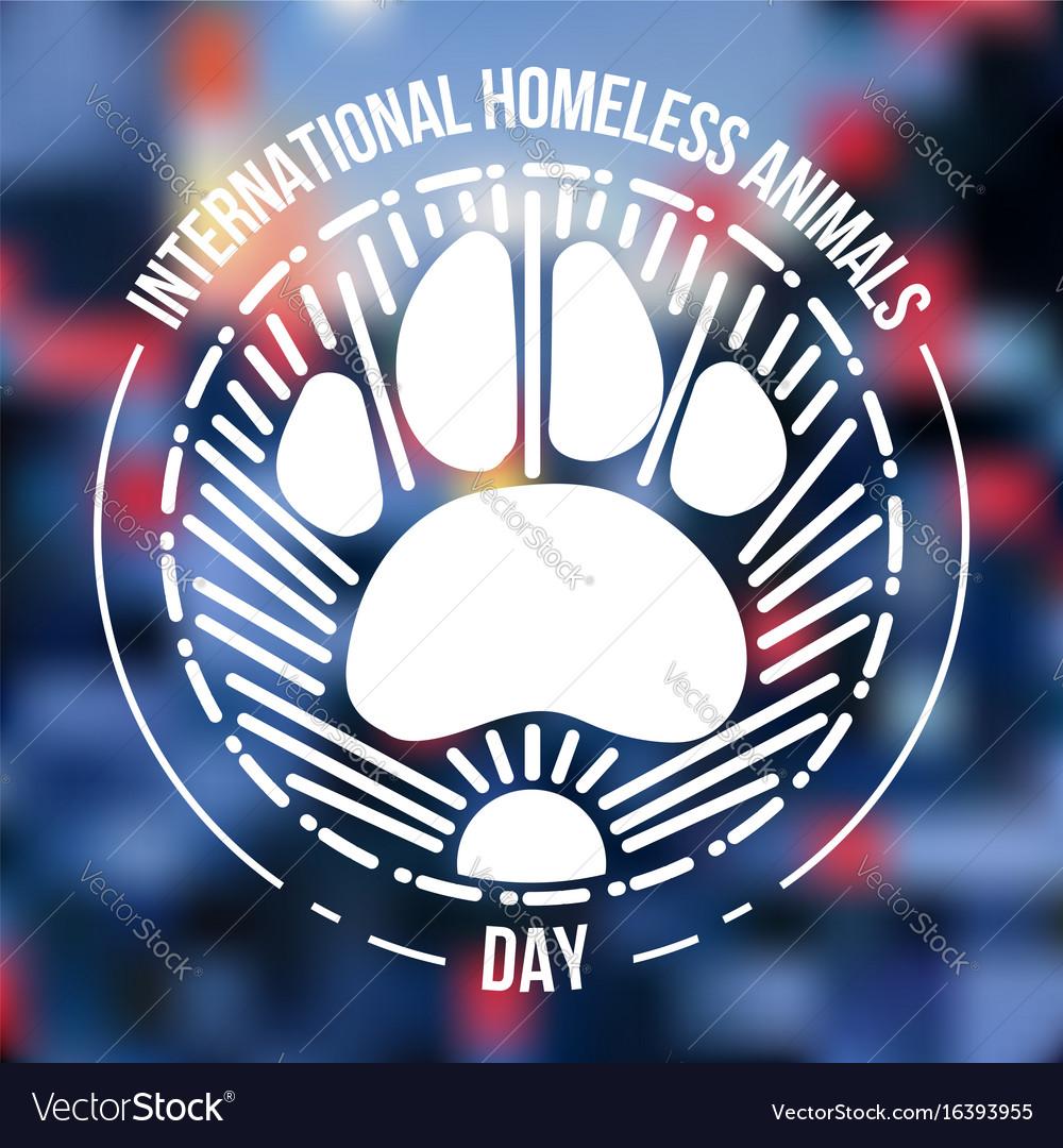 International homeless animals day vector image