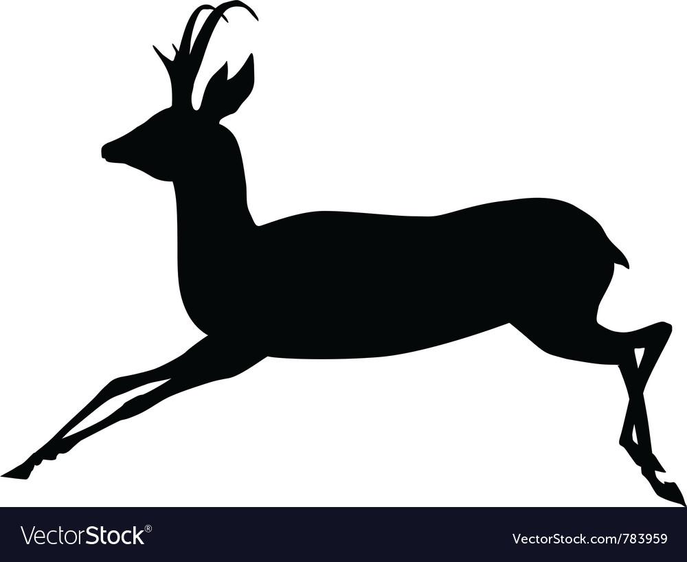 Antelope vector image