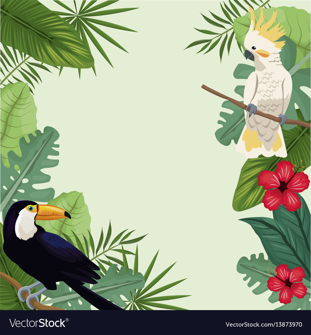 Tropical bird hibiscus exotic palm vector image