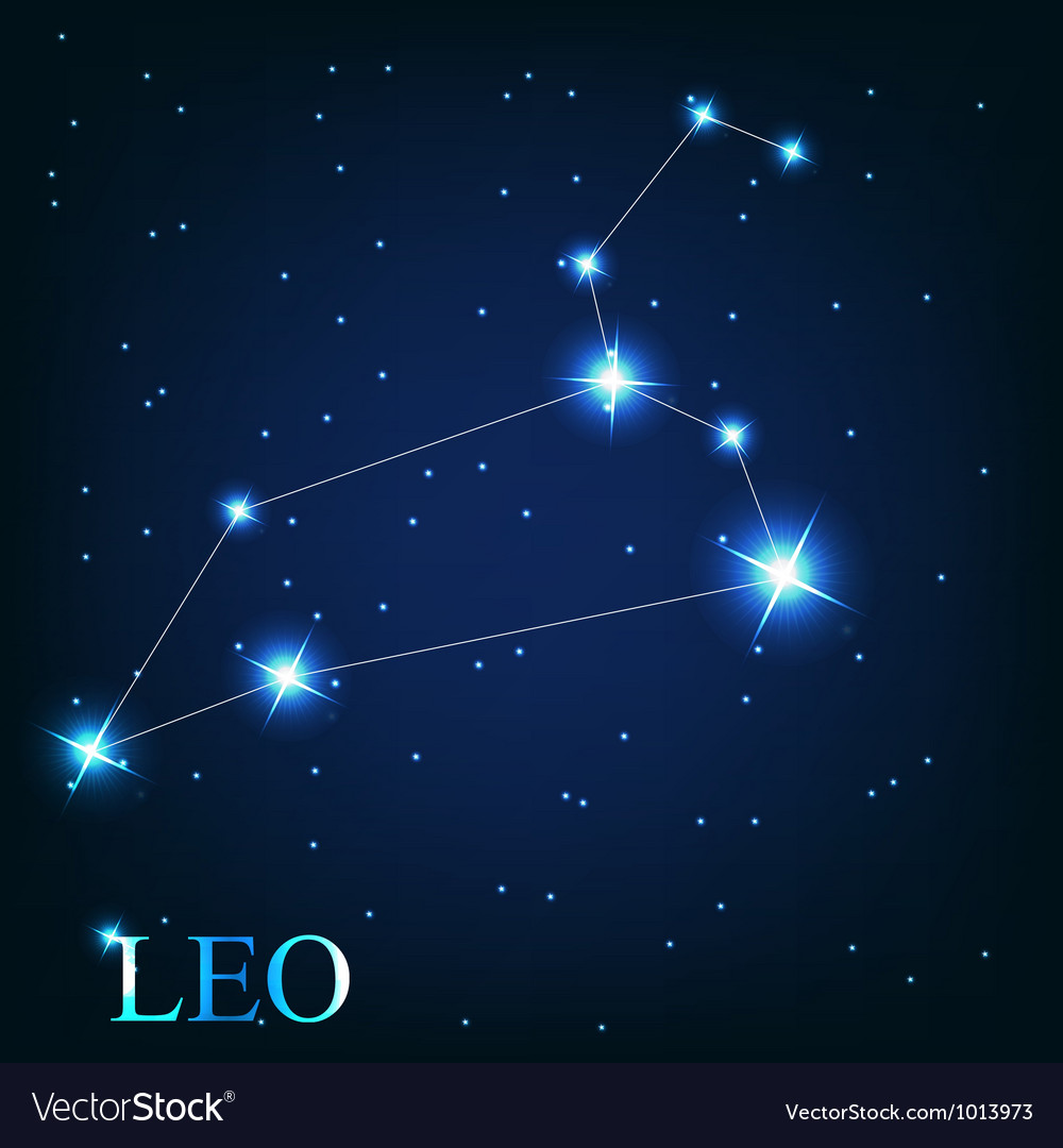 The leo zodiac sign of the beautiful bright stars vector image
