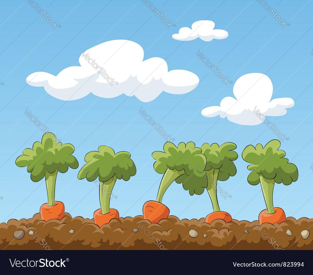 Garden bed vector image