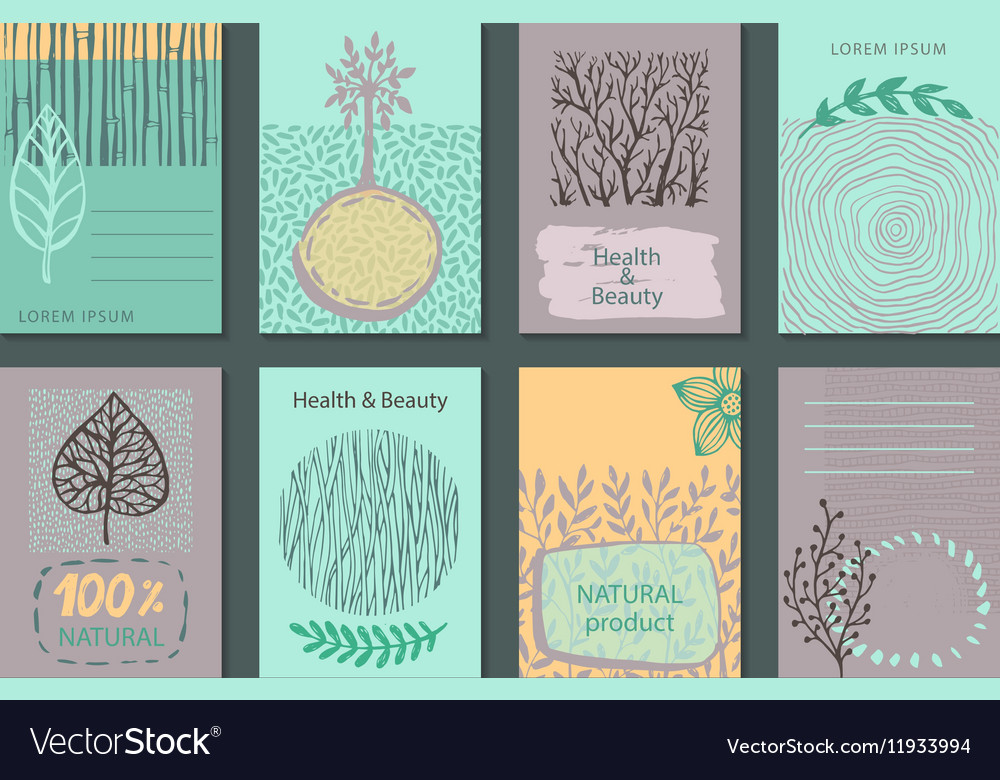 Nature Labels, Badges, Symbols With Leaves, Flowers And ...
