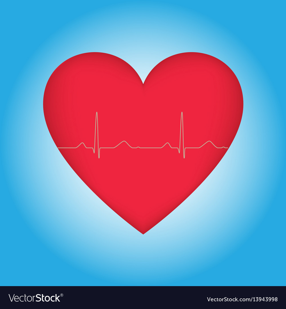 Heart with cardiogram on blue vector image