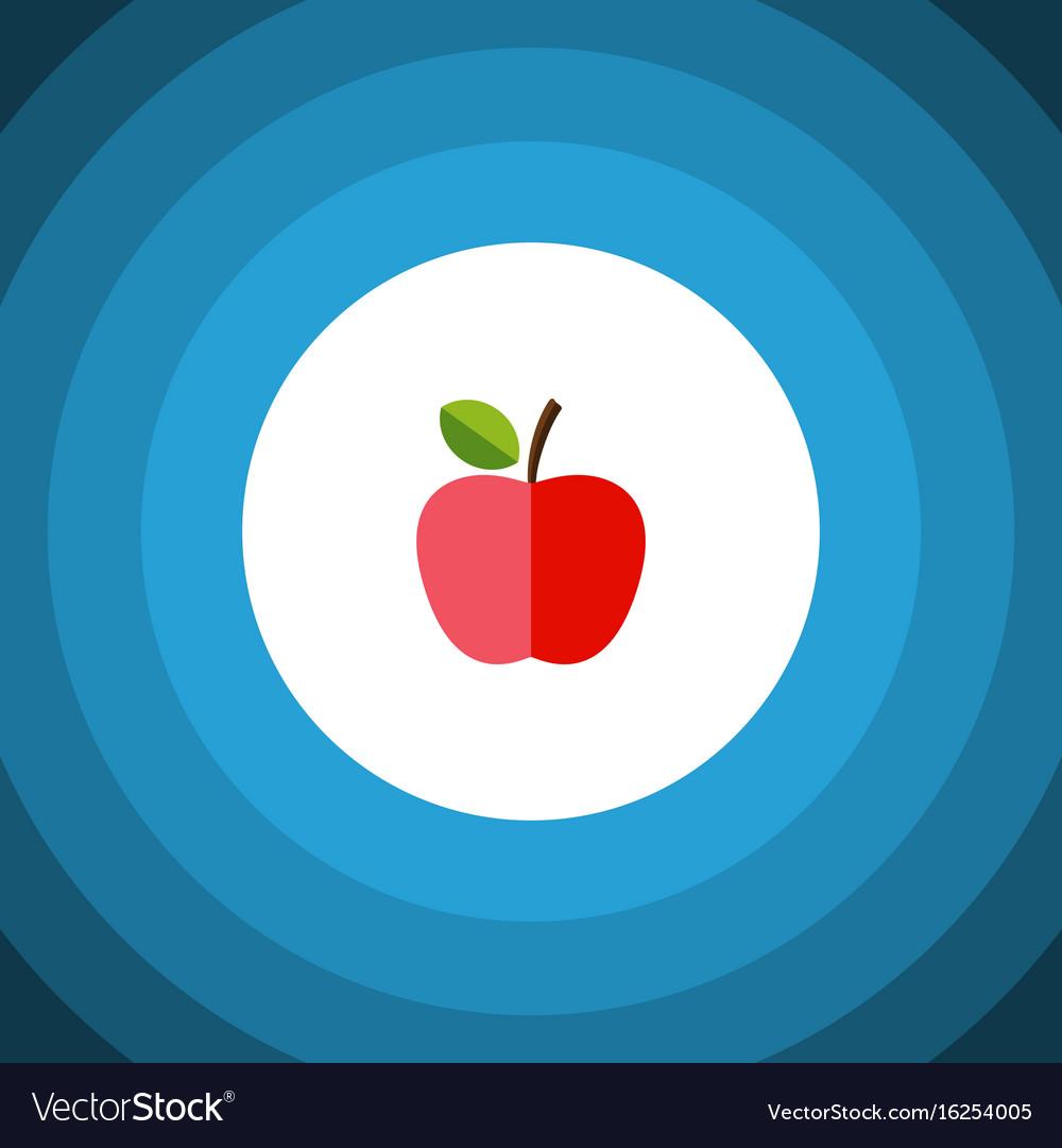 Isolated fresh fruit flat icon harvest vector image