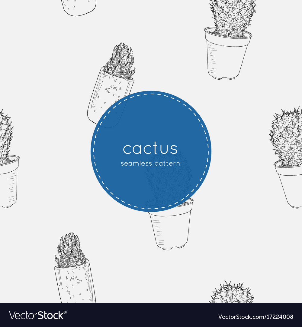 Indoor plants in pots seamless pattern vector image