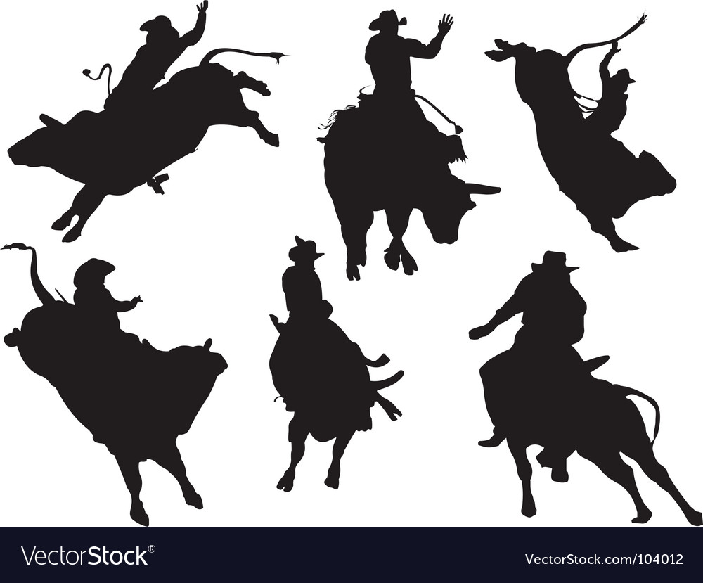 Bull riders vector image