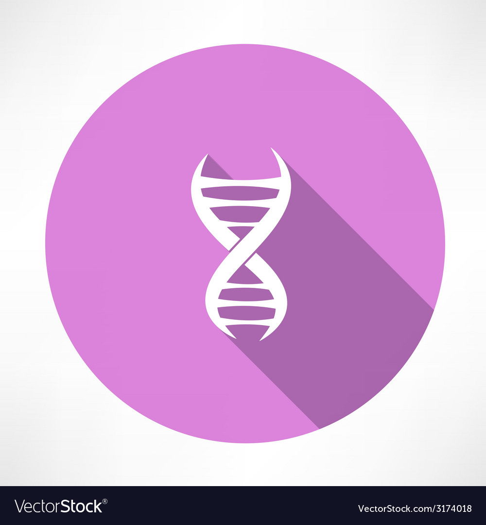Dna strands icon vector image