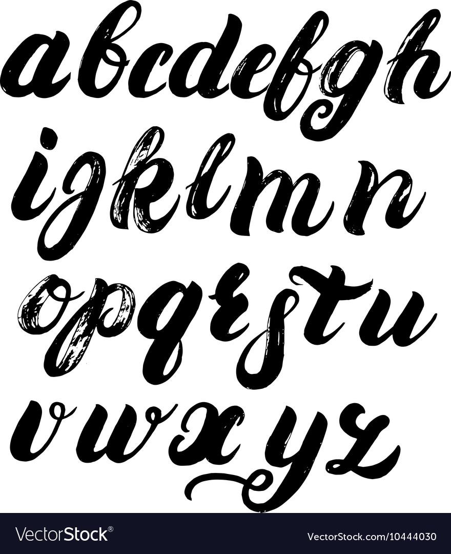 Hand written brush alphabet vector image