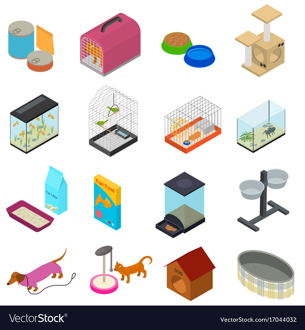 Accessories for domestic pets set care animal vector image