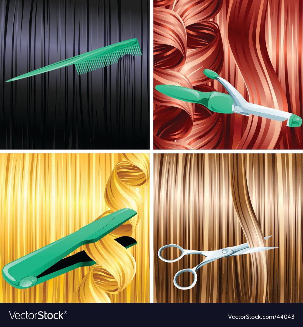 Hair care design vector image