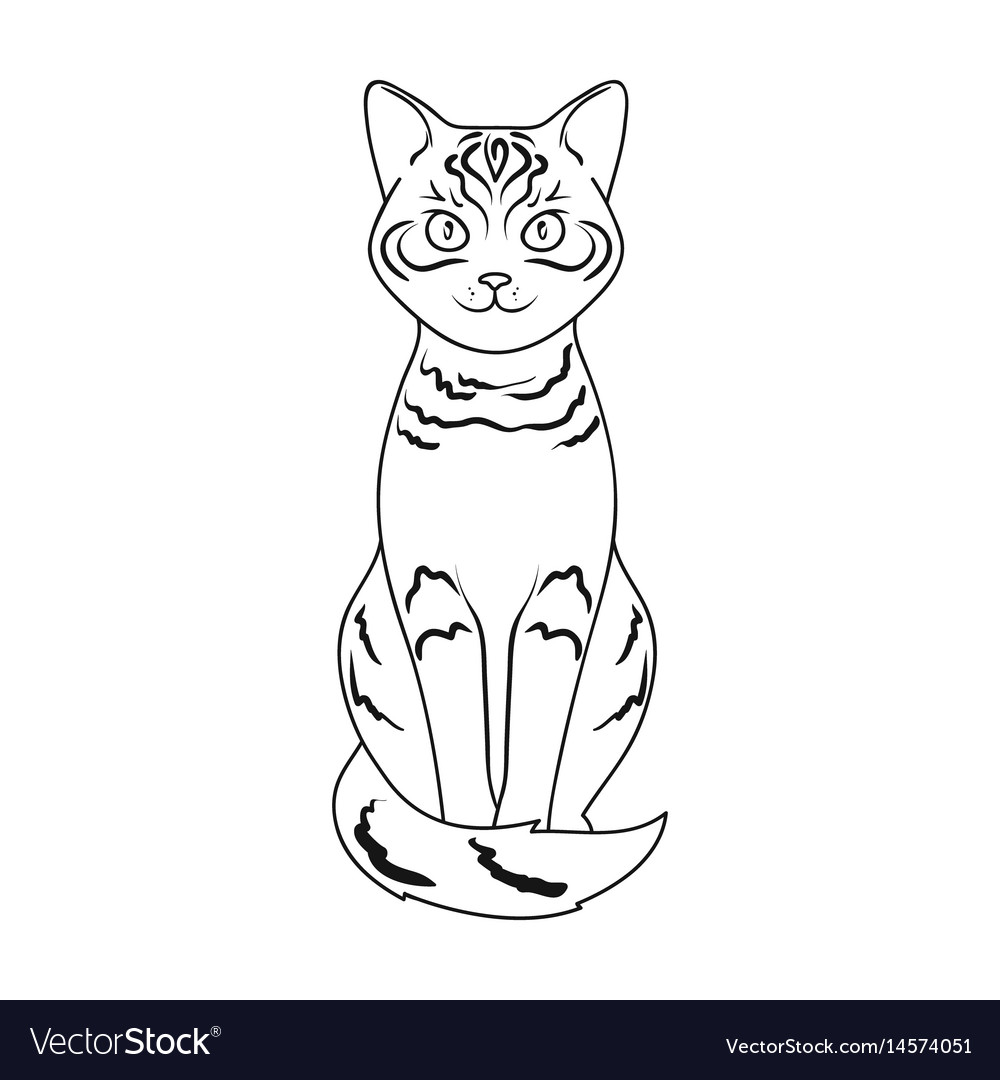 Gray catanimals single icon in outline style vector image