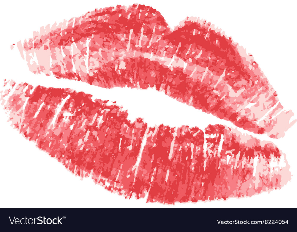 Kiss on white vector image