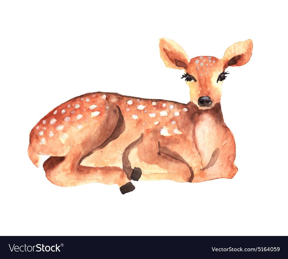 Watercolor deer vector image