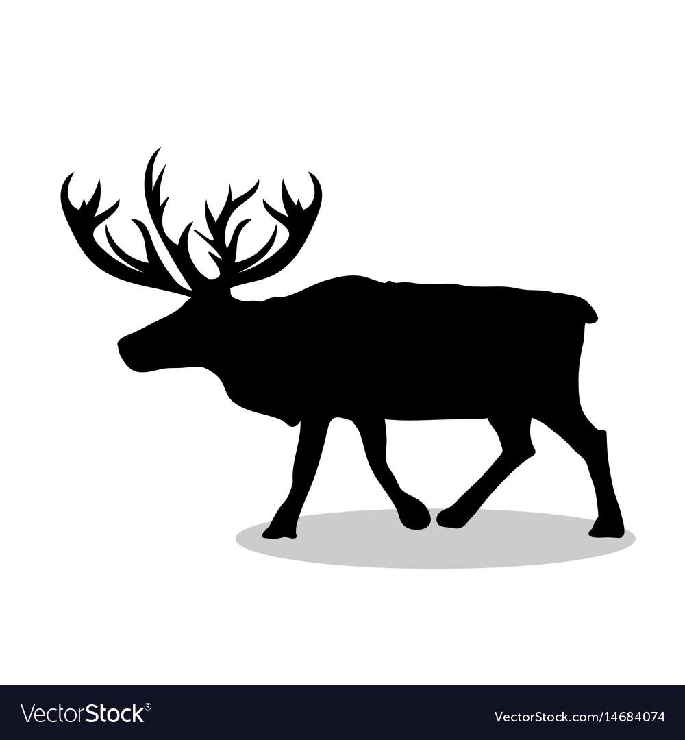 Deer northern black silhouette animal vector image