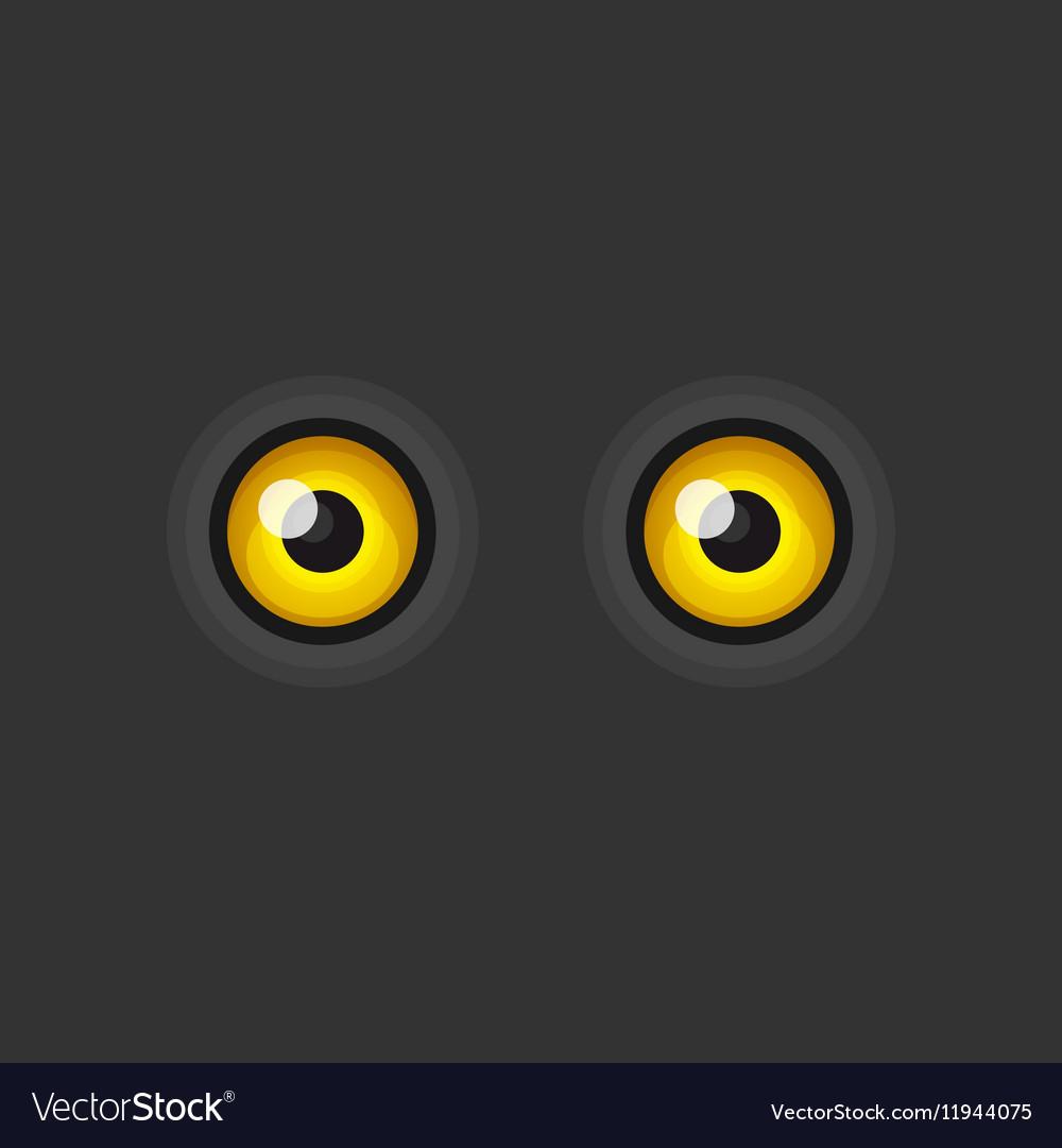 Yellow Cartoon Eyes on Dark Background vector image