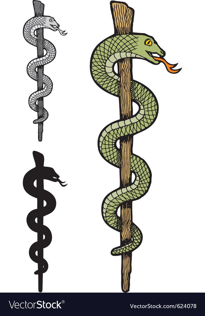 One snake caduceus vector image