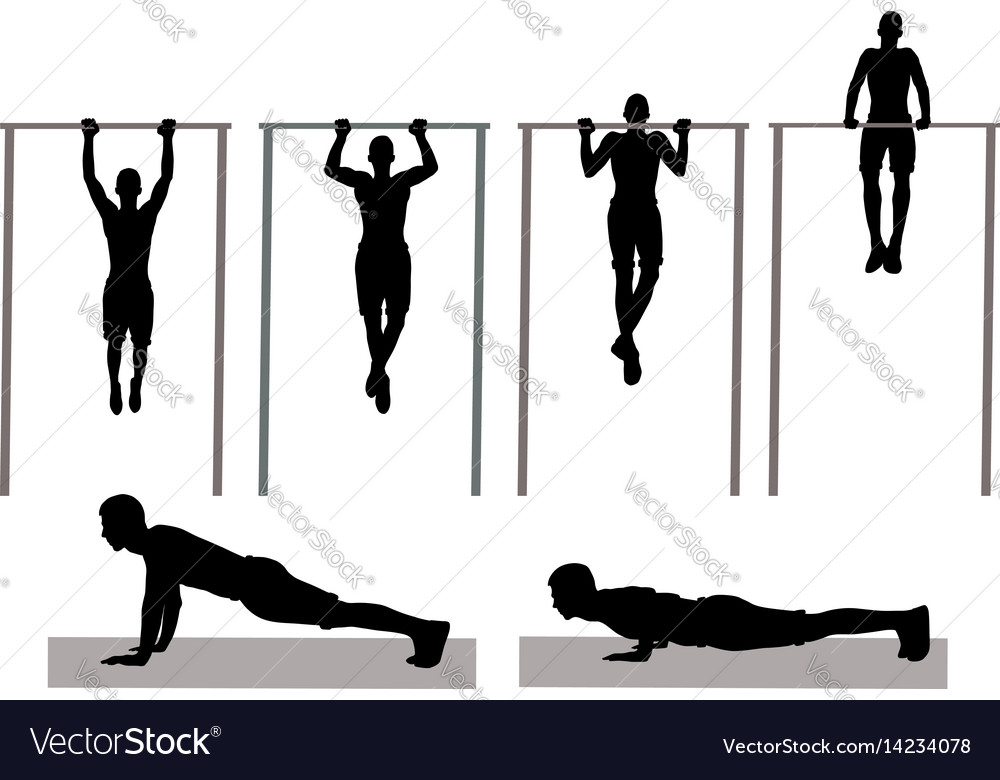 Physical exercise vector image