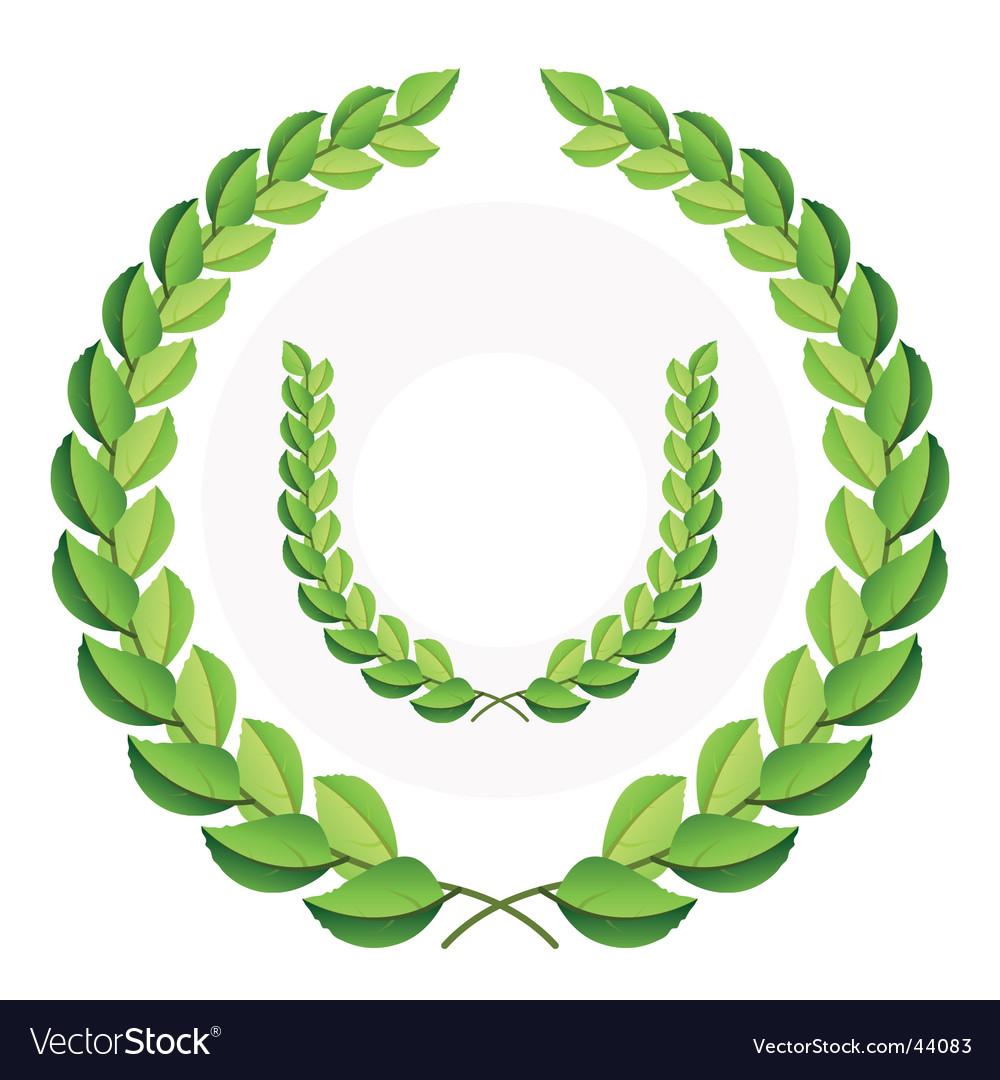 Green laurel wreath vector image