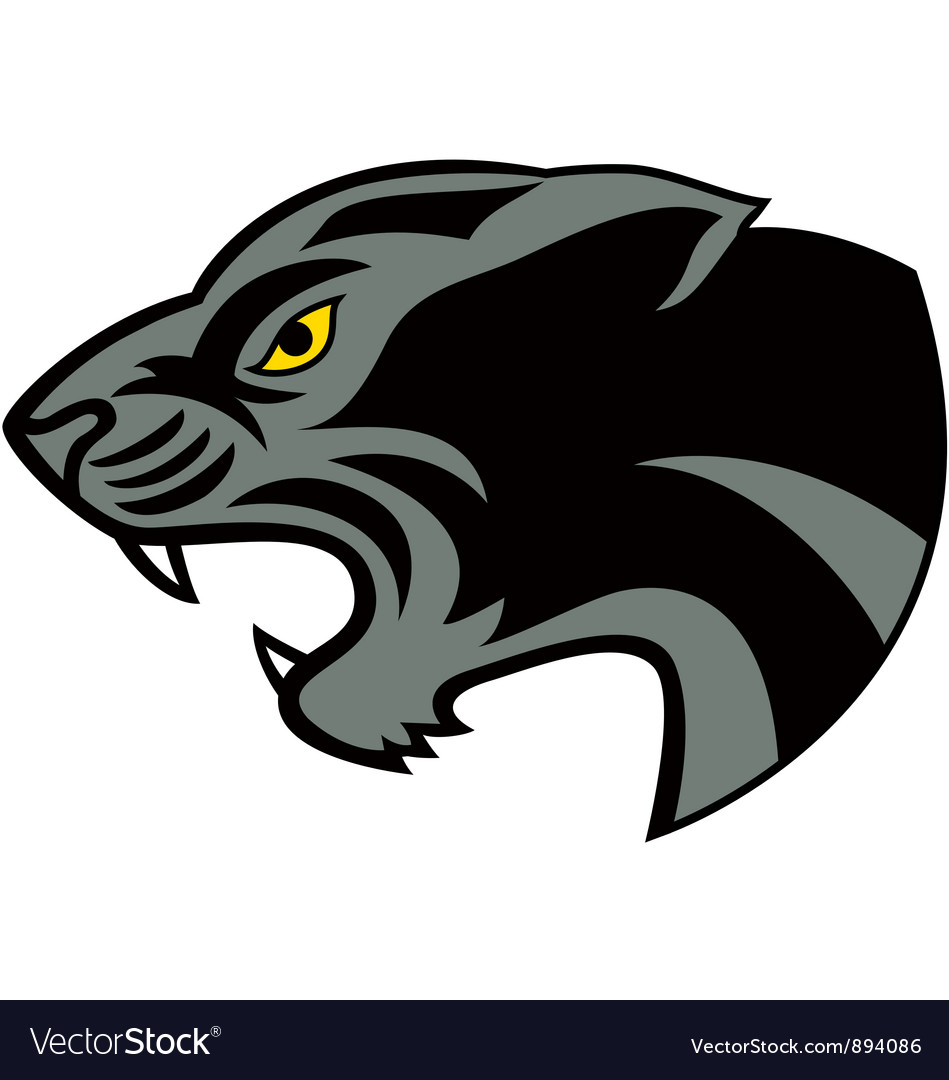 Head jaguar vector image