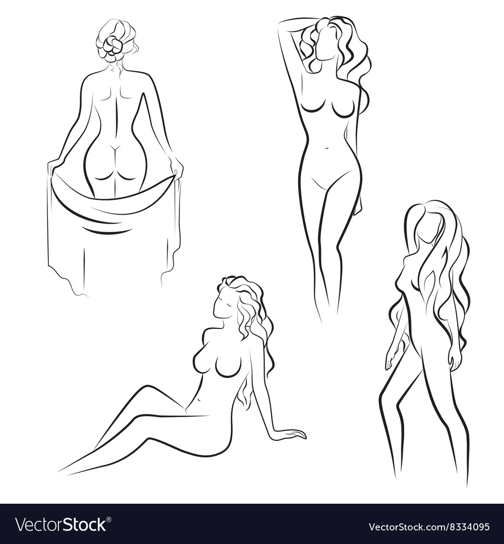 Beautiful line drawing Silhouettes of nude woman vector image