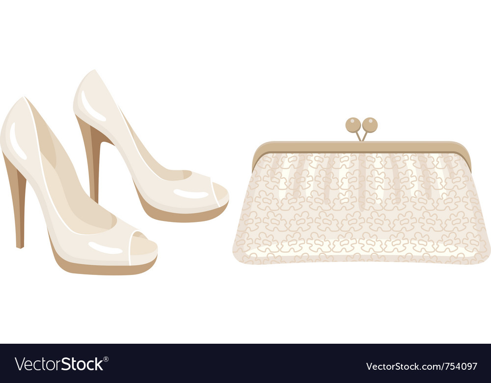Female bag and shoes vector image