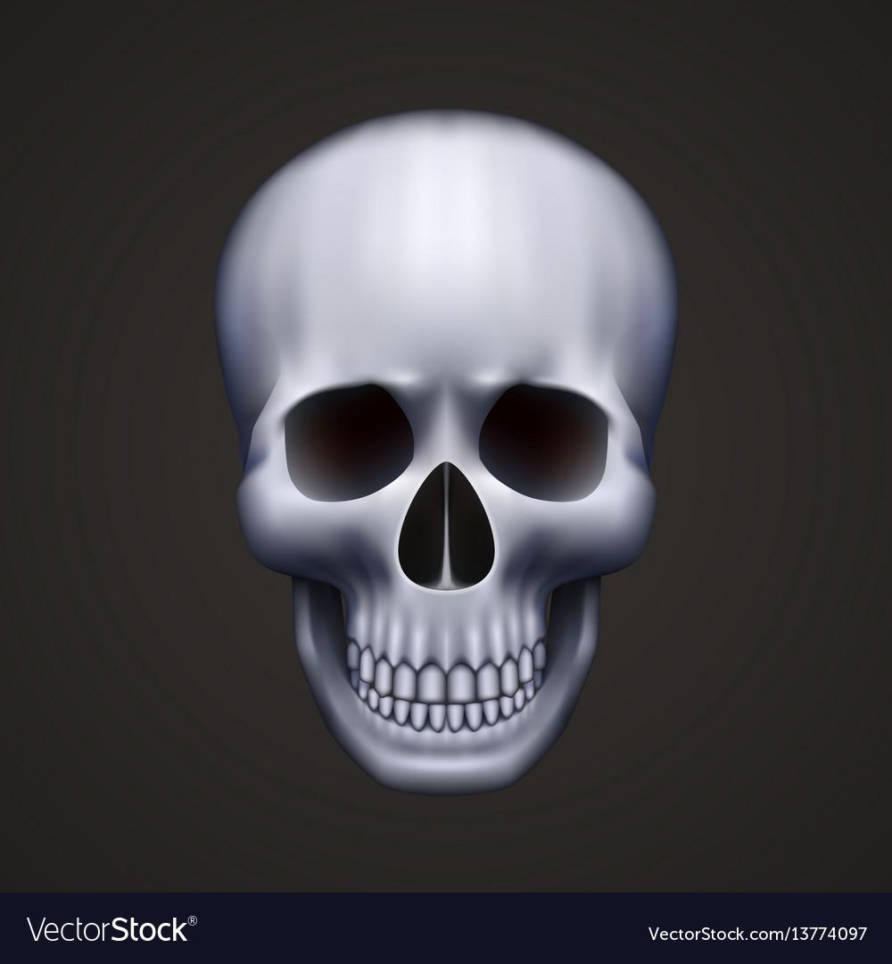 Human skull isolated on black vector image