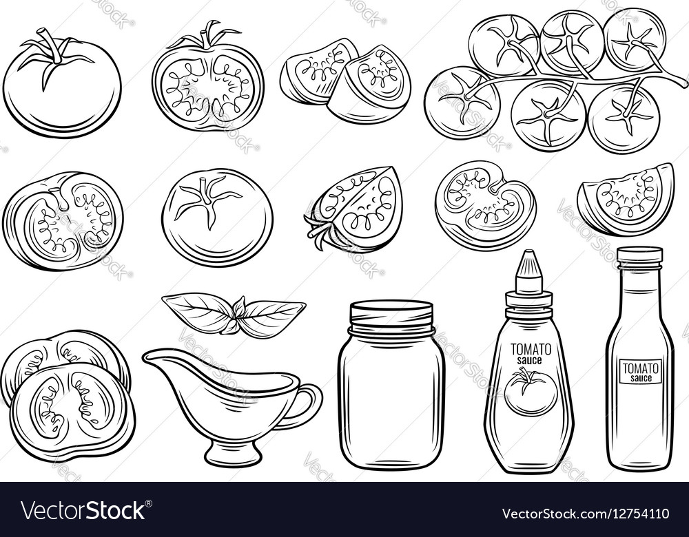 Set hand drawn tomato and sauce vector image