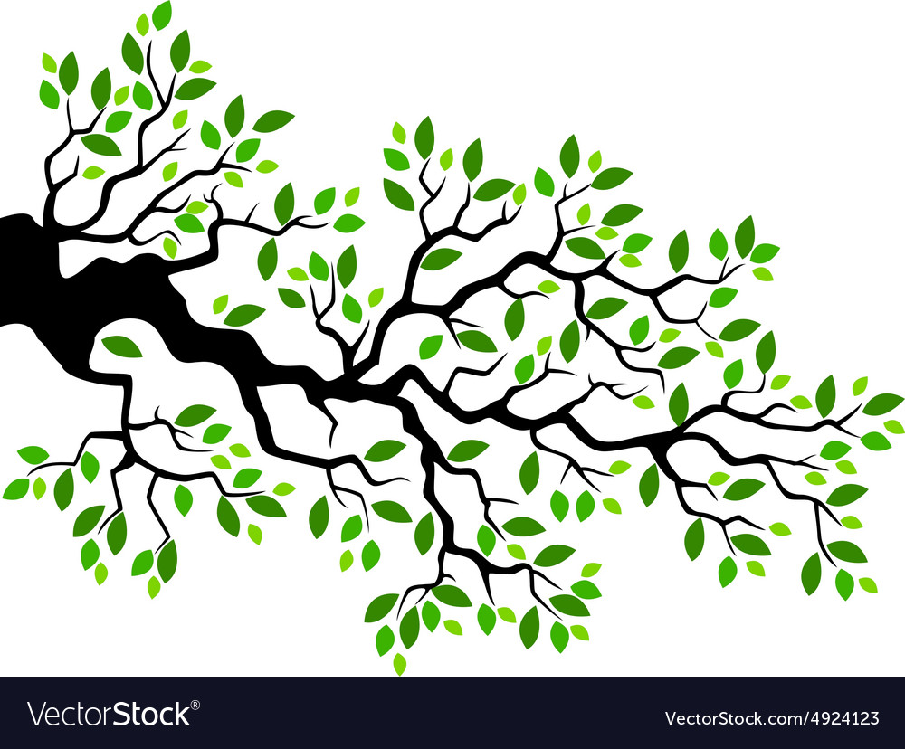tree branch with leaves vector. green leaf tree branch vector image with leaves v