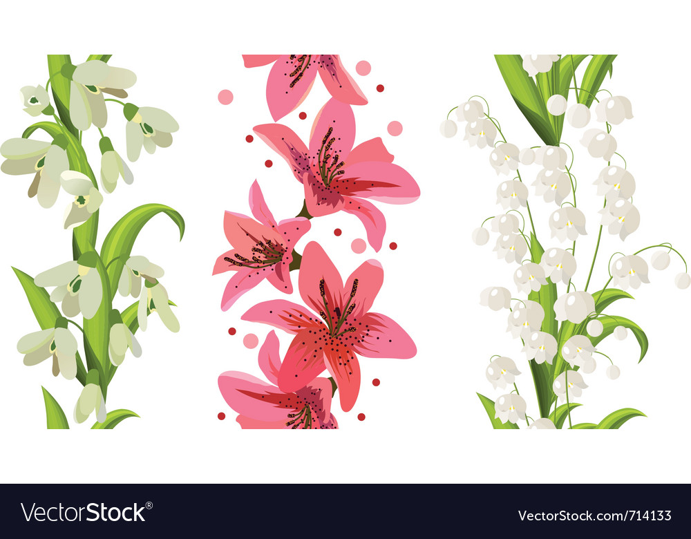 Flower borders vector image