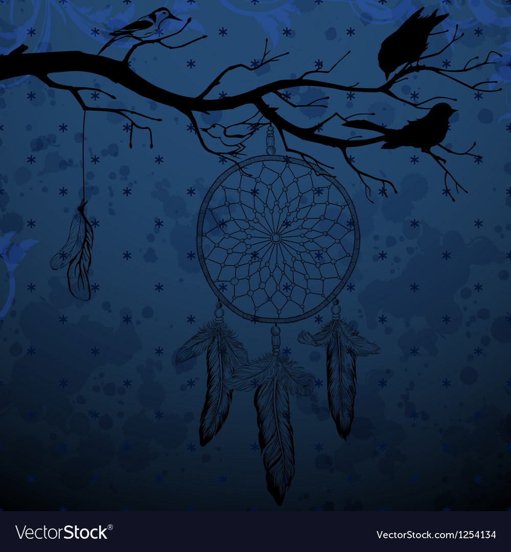 Dark blue background with dream catcher and birds vector image