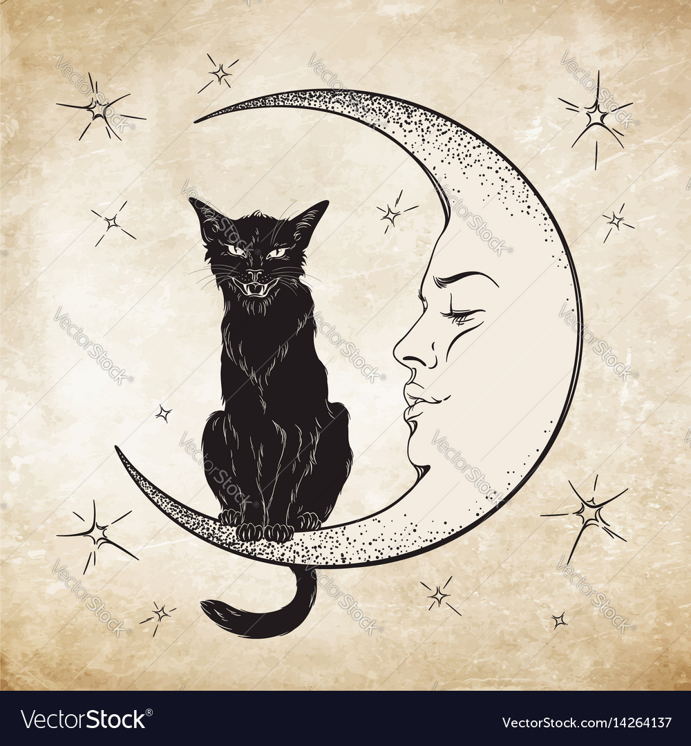 Black cat sitting on the moon wiccan familiar vector image