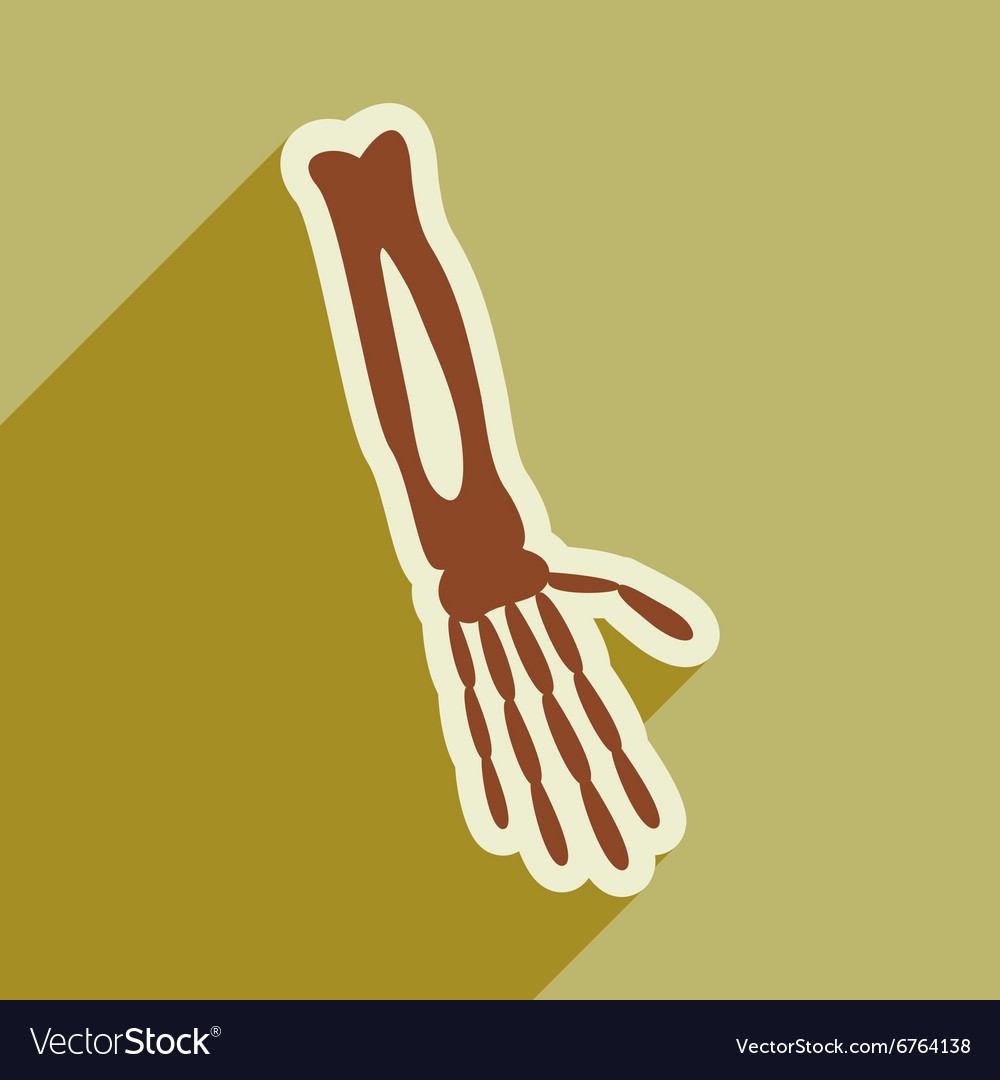 Flat icon with long shadow bones of human hand