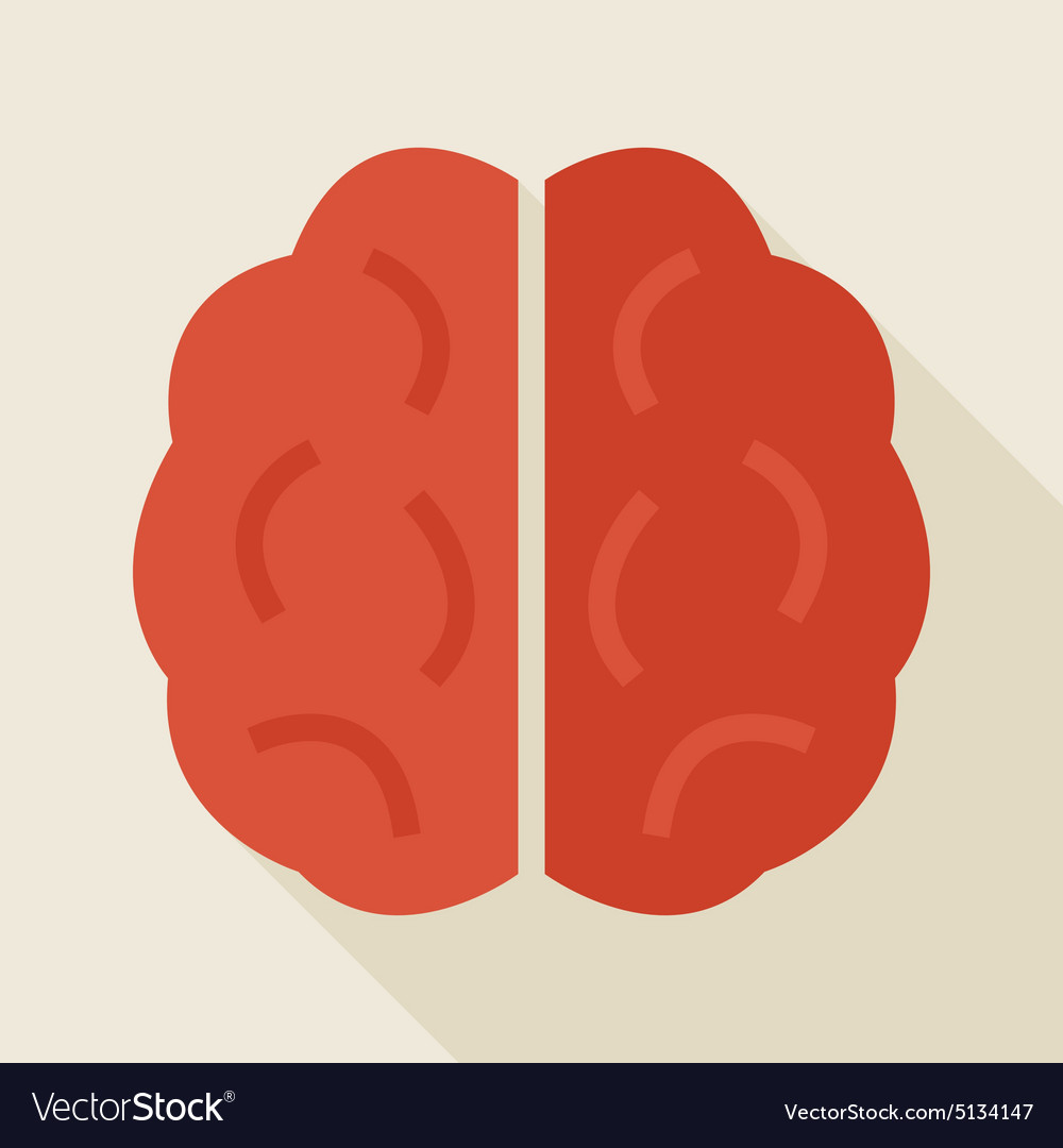 Flat Knowledge Human Brain with long Shadow vector image