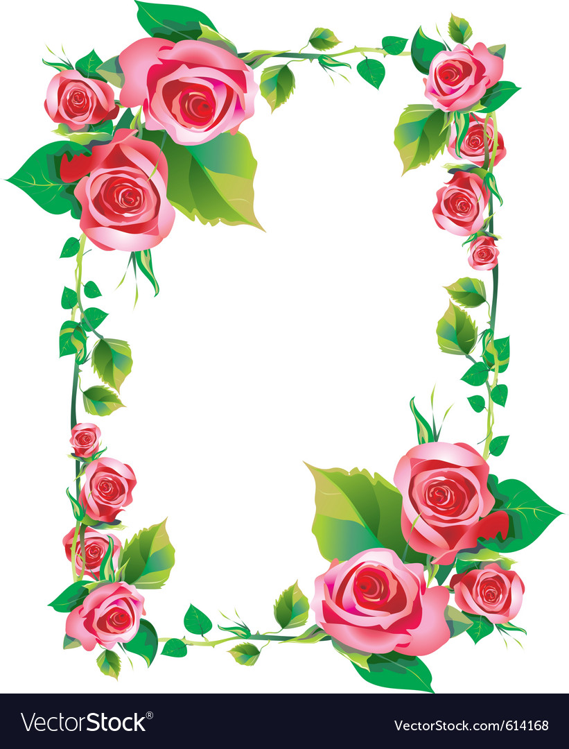 rose frame royalty free vector image vectorstock