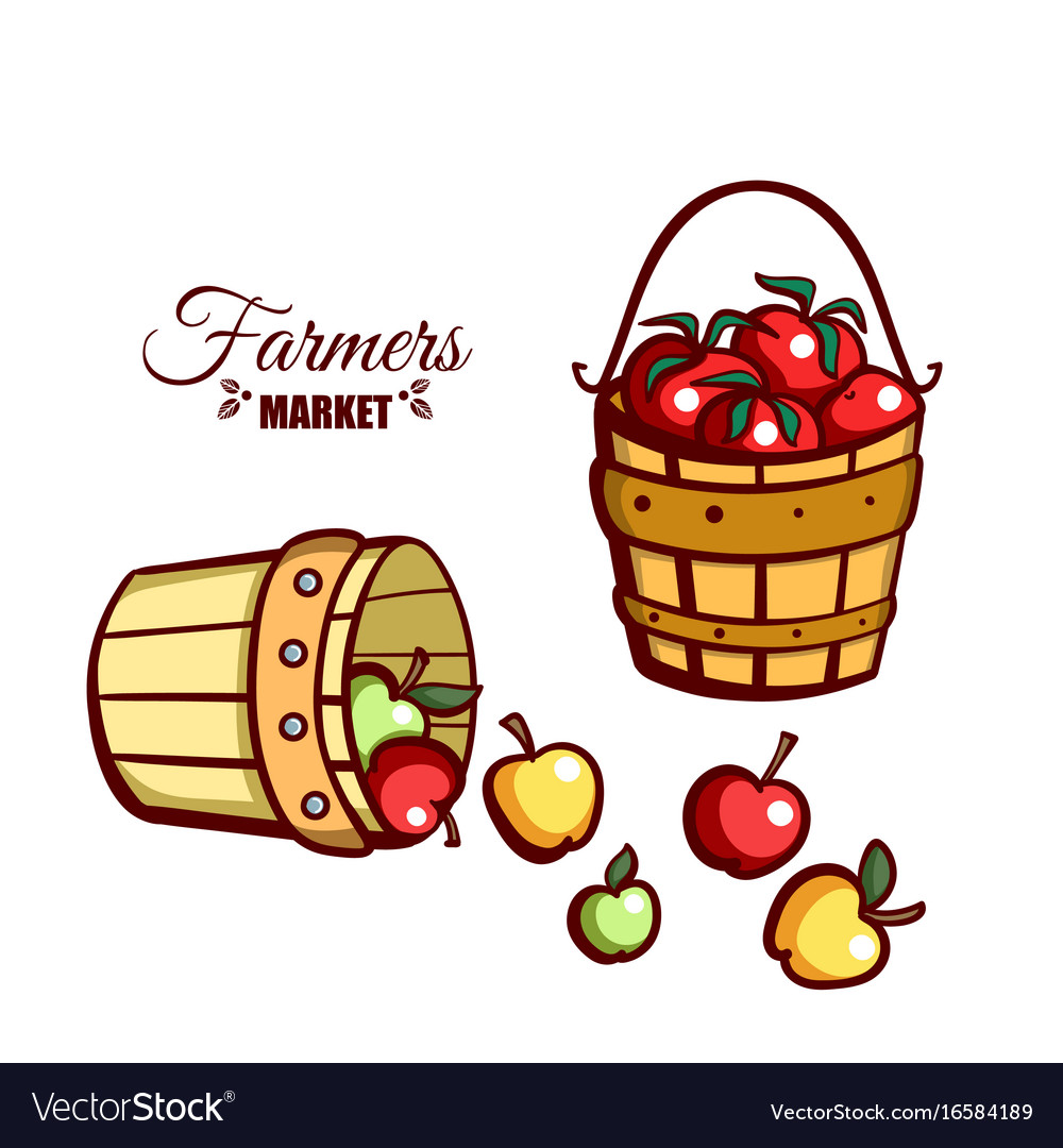 Farmers market apples tomatoes vector image
