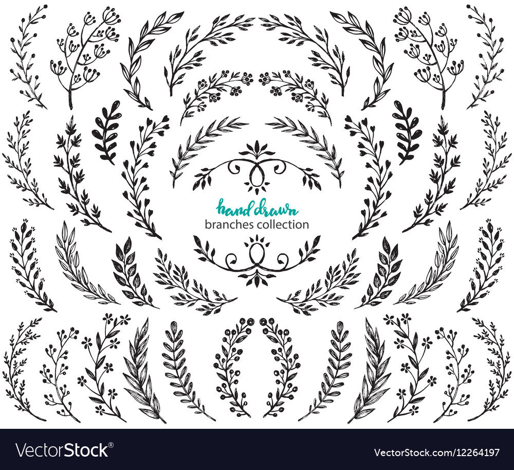 Big set of hand drawn flowers and branches vector image